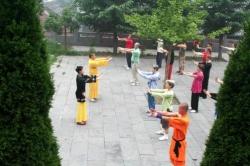 Yi Jin Jing à Fa Wang