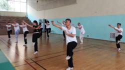"""Stage de Kungfu """"Hei Hu Quan"""" (forme du tigre noir), avec Shi Miao Dian"""