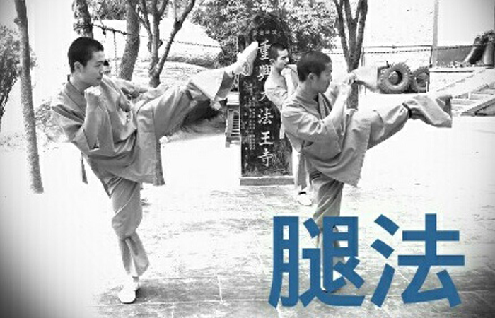France shaolin club arts martiaux chinois paris for Maitre art martiaux chinois