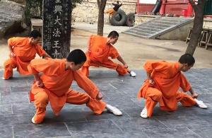 Les techniques de base du kung fu france shaolin club for Kung fu technique de base pdf
