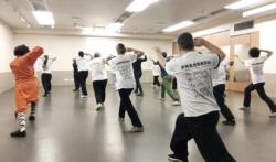Cours de boxe interne avec Shi Miao Dian