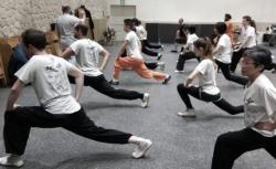 Cours de Kung Fu externe avec Shi Miao Dian