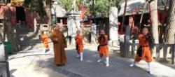 L'école d'arts martiaux du Temple Fa Wang