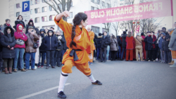 """Kung Fu méthode traditionnelle """"Da Tong Bi Chui"""""""