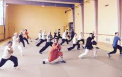 """Stage animaux """"Shaolin Wu Xing Zhong He Quan"""" avec Maître Shi Miao Dian"""