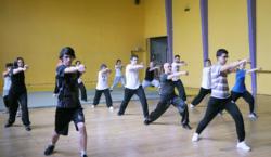 """Stage """"Shaolin Luo Han Shi Ba Shou"""" avec Maître Shi Miao Dian"""