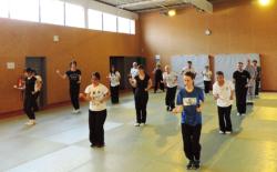 """Stage """"Shaolin Jin Gang Xiao Pao Chui"""""""