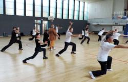 "Stage de Kung Fu ""5 animaux"" à Lille"